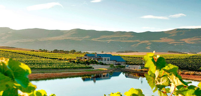 Wine Estate Trading Quotes and List